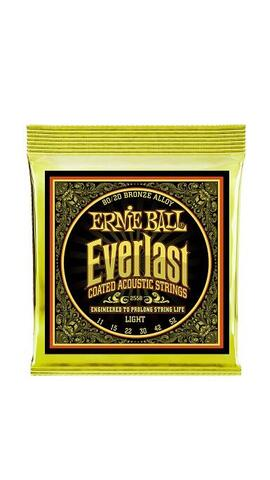 Ernie Ball Everlast 80/20 Bronze Light 11-52